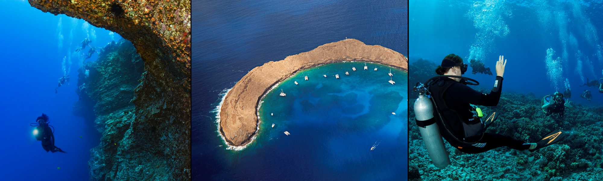 Maui Dive Shop Molokini Backwall Adventure Dive